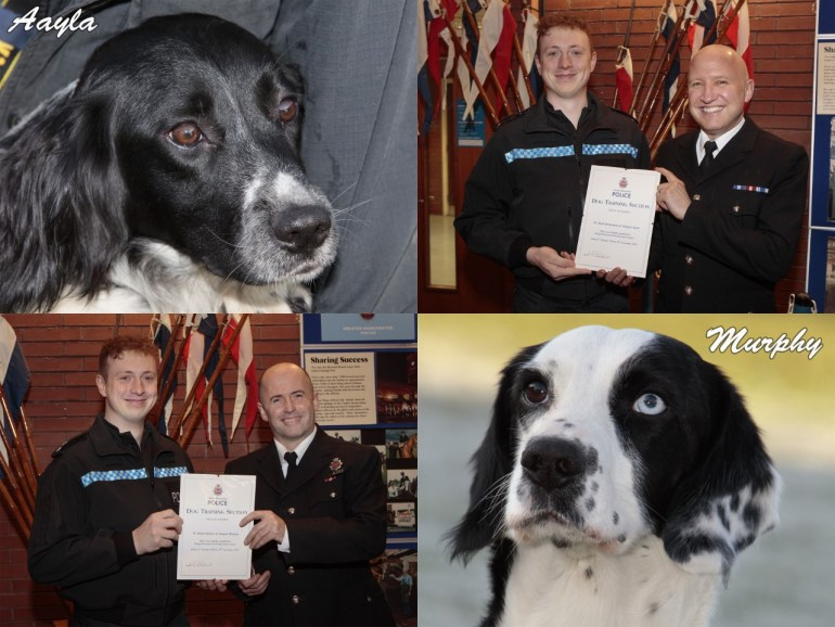 GMP police dogs