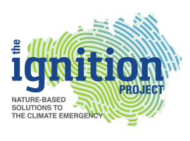 IGNITION Project – revitalising Salford's greenery