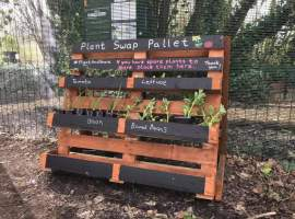 Image credit- Ian Bocock - Plant Swap Pallet at Cleavley Forest Community Garden- permission to use from Ian Bocock