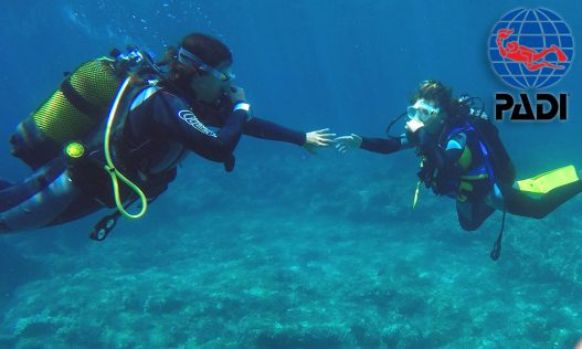 Baptême de plongée avec S'Algar Diving Minorque, dans la réserve marine Isla del Aire