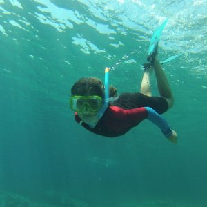 Snorkelling | Boat Excursion