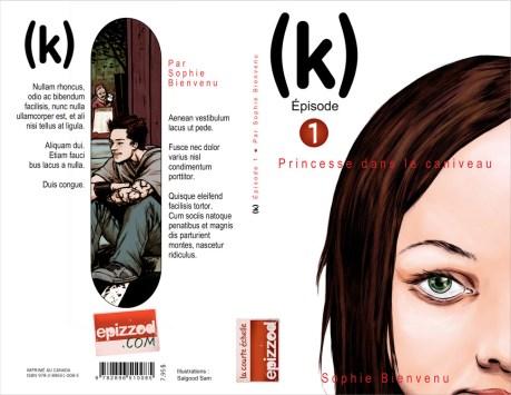 YA fiction book cover