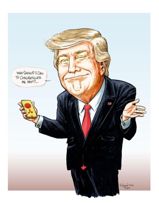 TrumpFltwb