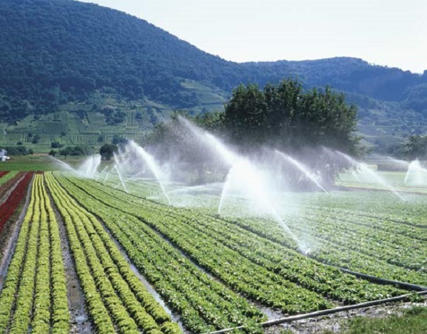 World's Biggest Irrigation System