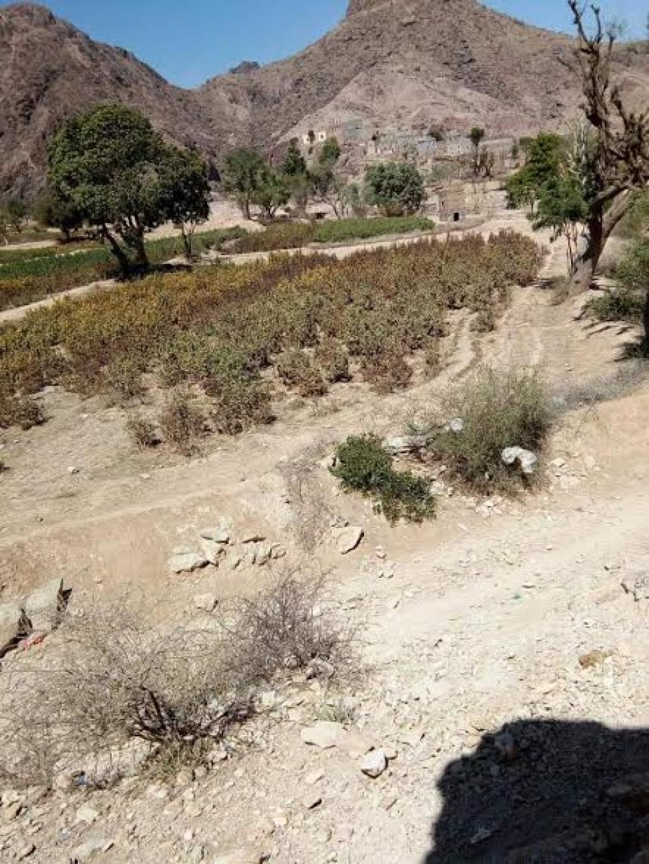 أهالي وادي السرايا يناشدون بانقاذ منطقتهم التي وصفوها بالمنكوبة