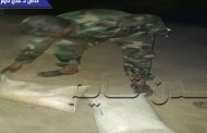 قوات الأمن بلحج تضبط كميات من مادة ( السي فور) شديدة الإنفجار