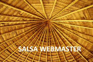 Terms of reference for SALSA webmaster