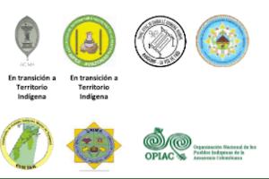 OPIAC Y ORGANIZACIONES DEL AMAZONAS