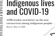 Vidas indígenas y Covid-19 (5-12-20)