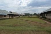 Vaupés: el otro grito de auxilio en la Amazonia (5-23-20)