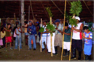 TEJAMA Amazonas colombia covid-19