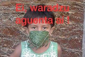 https://brasilplural.paginas.ufsc.br/antropologia-na-pandemia/sobre-a-chegada-do-covid-19-ao-sul-da-bahia-relato-de-uma-antropologa-em-campo/