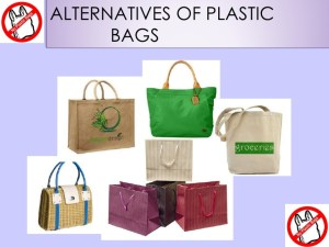 Alternatives to Plastic bg