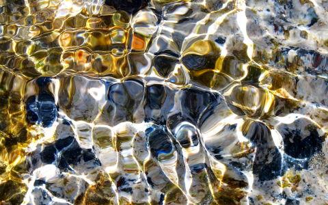 water at Polly Joke mobile version