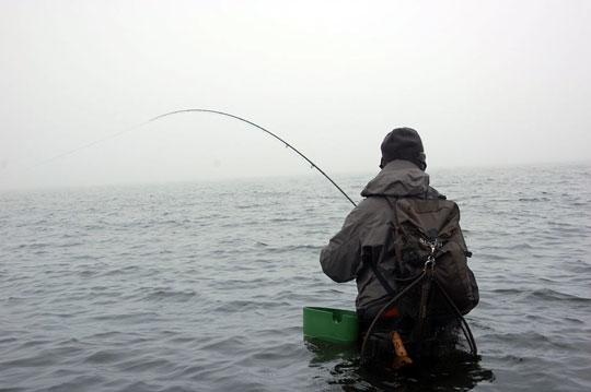Fluefiske etter sjøørret på Bornholm med Nordisk Fiskeutstyr