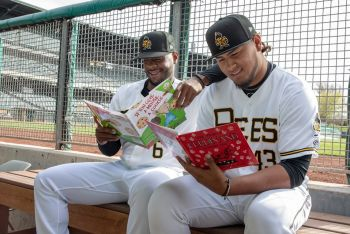Bees Reading