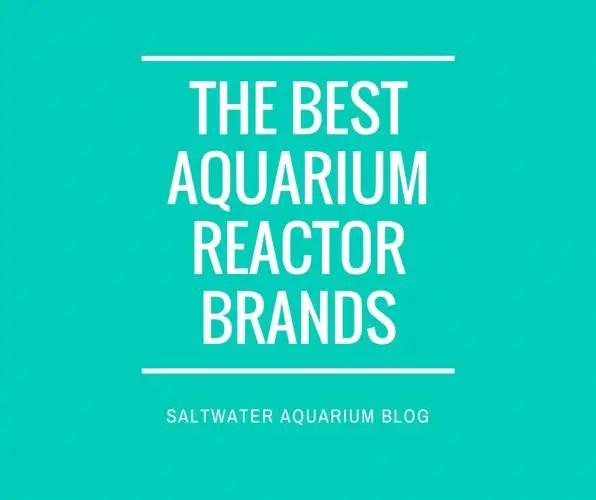 best aquarium reactor brands