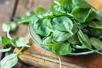 Las espinacas: Laxantes naturales y otros beneficios