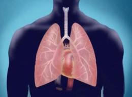 El asma: sus causas y remedios naturales