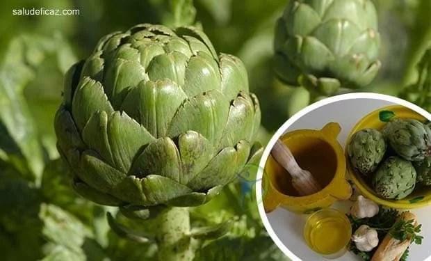 Alcachofa propiedades y beneficios para tu salud