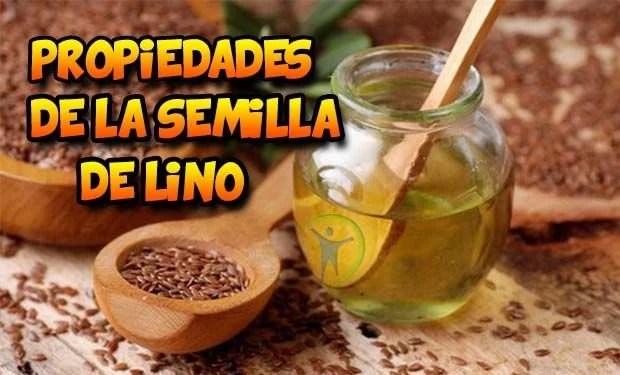 6 propiedades y beneficios de la semilla de lino o linaza