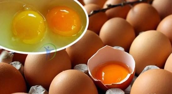 huevos de yema naranja o amarilla