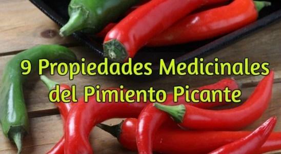 propiedades medicinales del pimiento picante