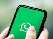 Resultados de Covid-19 se podrán consultar online y hacer las citas para laboratorio por WhatsApp