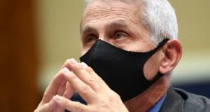Fauci, el epidemiólogo jefe de EE.UU. reconoce pandemia se salió de control