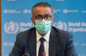 La OMS descarta ahora que coronavirus pudiera haber llegado a Wuhan en alimentos congelados