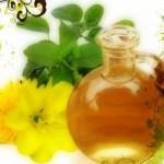 Donde Comprar Aceite de Onagra + Beneficios Para la Salud