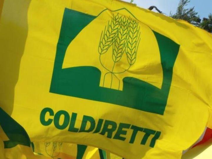 La Coldiretti incontra i soci Biellesi lunedì al Polivalente di Salussola