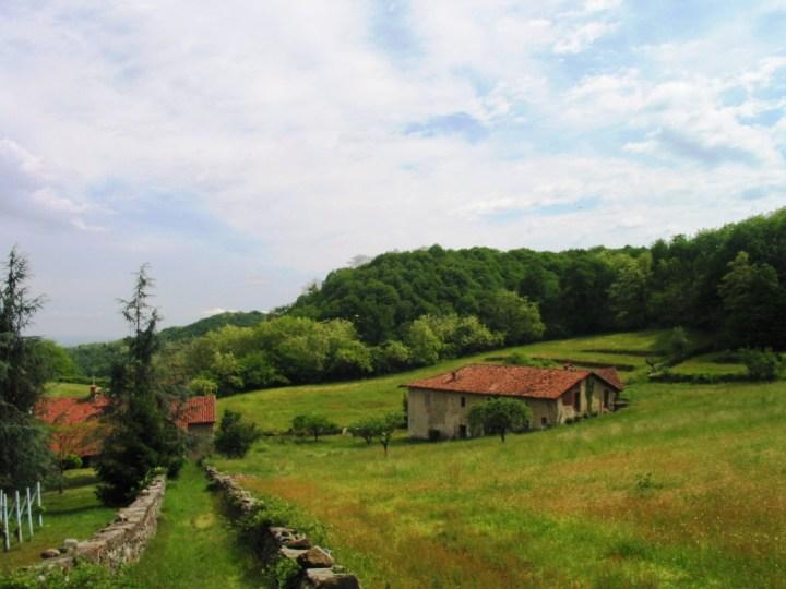 Le chiese scomparse di Salussola: L'oratorio della Madonna degli Angeli