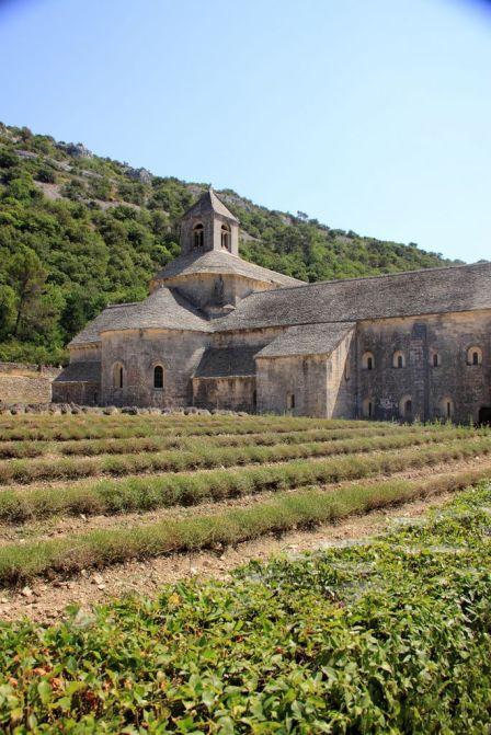 Abbaye Senanque pink floyd wine