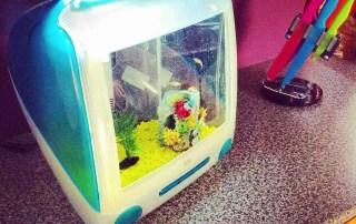 Repurposed-G3-iMac-upcycled-aquarium-Imacquarium