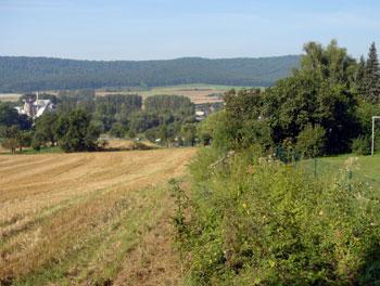 Die Trasse der Bremsbahn ist heute zugewachsen. (Foto: Kölle, September 2005)
