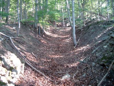 Das Ende der Bremsbahn oberhalb der Grillhütte. (Foto: Kölle, August 2005)