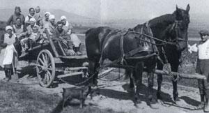Pferdegespann aus Ahrenfeld