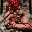 Amour cruel