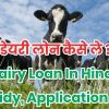 डेयरी लोन कैसे ले ? Dairy Loan In Hindi l Subsidy, Application Form Nabard