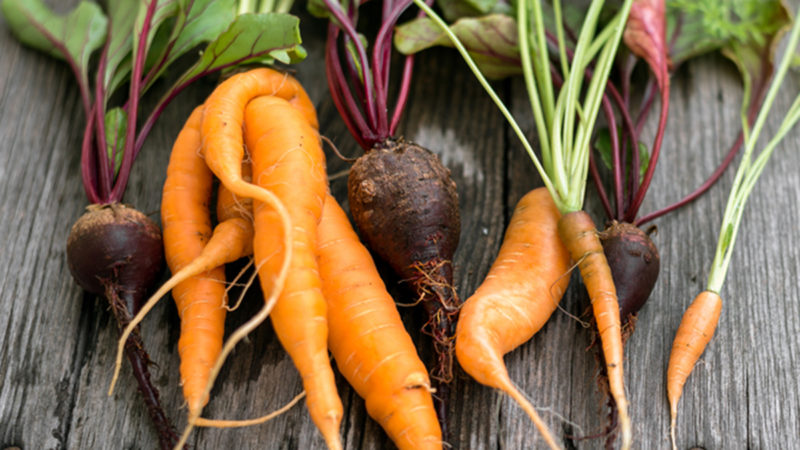 """Ugly"" Fruit & Veg Is Beautiful, Costs Less & Saves Mother Earth."