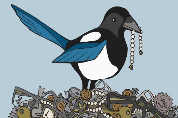 Magpie Culture. Why We Need To Let Go Of Our Hoarding Ways.