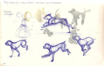 sketches of dog running