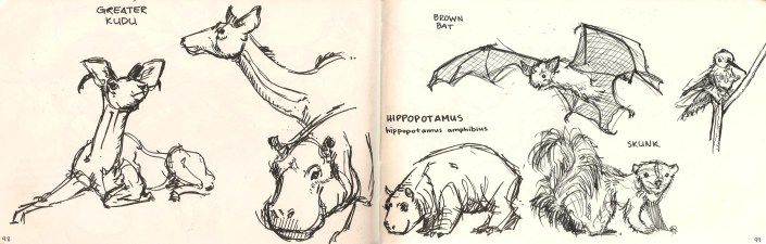 sketches of animals from Natural History Museum Los Angeles