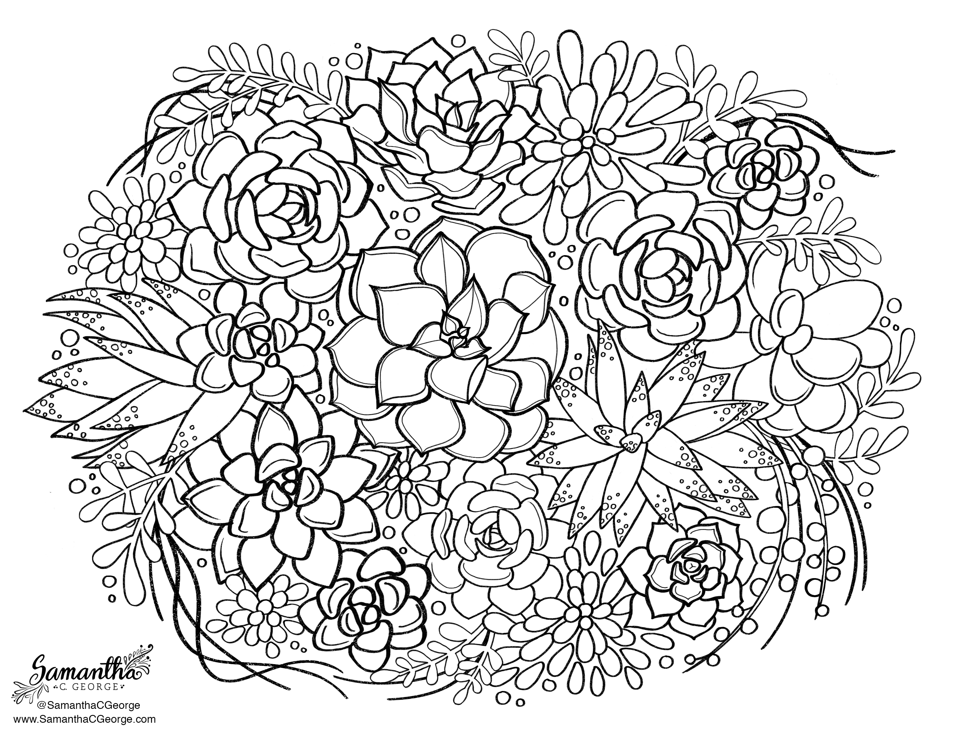 Succulent Coloring Page Samantha C George