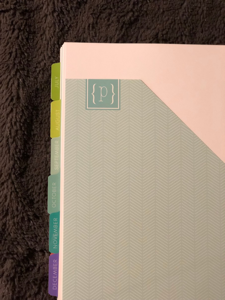 Organized monthly tabs on Plum Paper planner