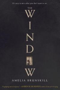 The Window by Amelia Brunskill
