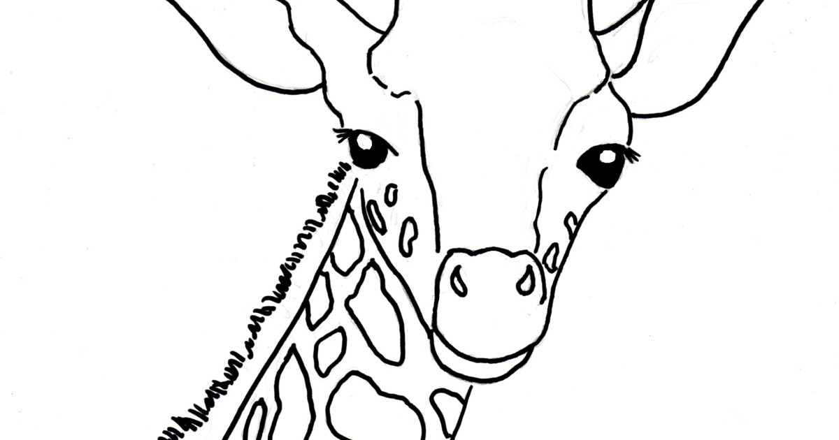 Baby Giraffe Coloring Page Art Starts