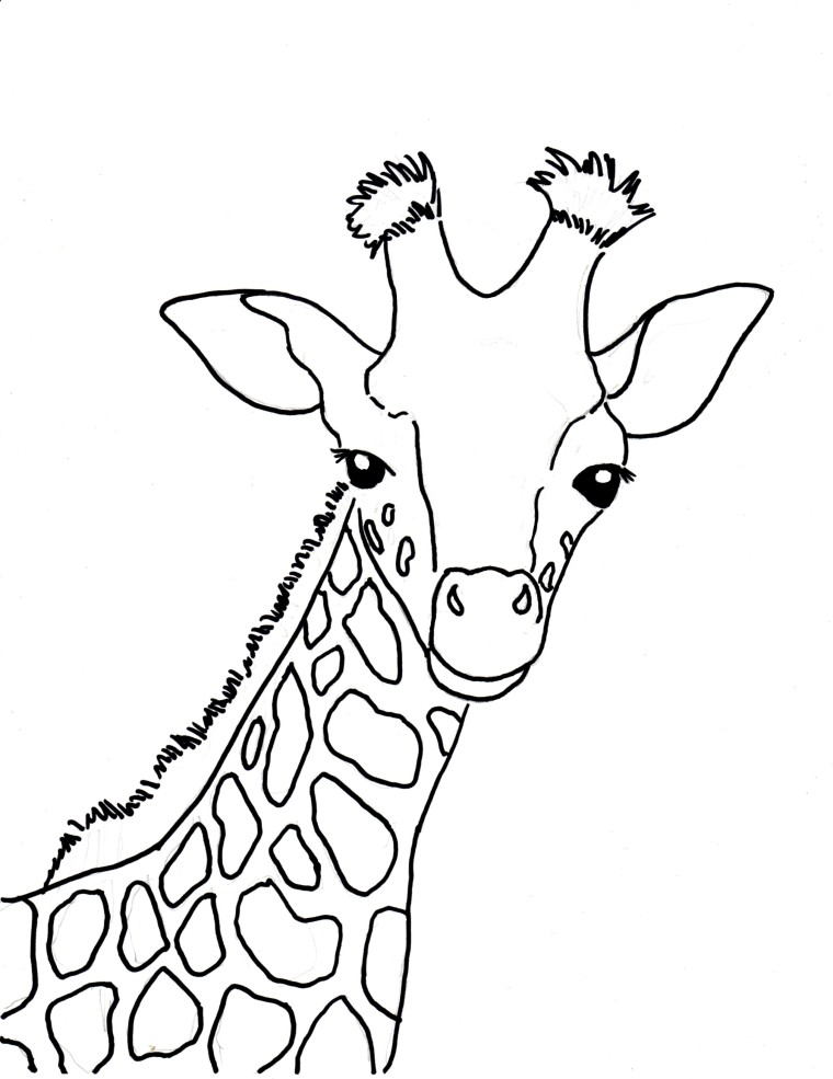 Baby Giraffe Coloring Page Art Starts
