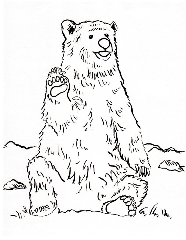 Grizzly Bear Coloring Page - Art Starts